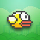 flappy bird, retail
